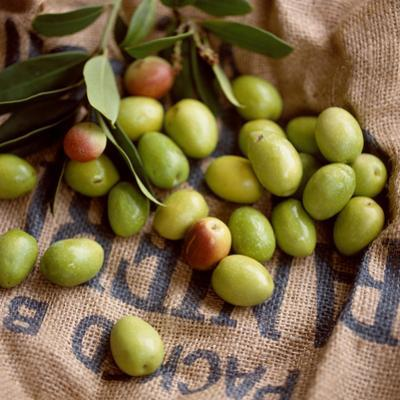 Green Olives on Burlap by George Seper