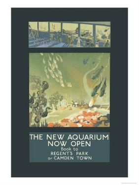 The New Aquarium Now Open by George Sheringham
