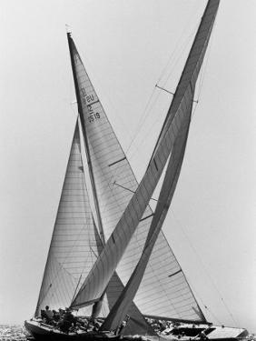 Columbia and Nefertiti During America's Cup Trial by George Silk