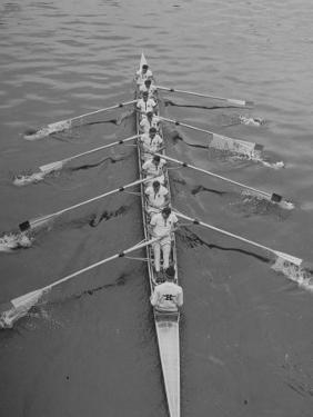 Kent School Rowing Crew Practicing For the Royal Henley Regatta by George Silk