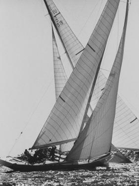 The Colombia and Nefertiti During Trial Race For the America's Cup by George Silk