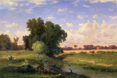 Hackensack Meadows, Sunset, 1859