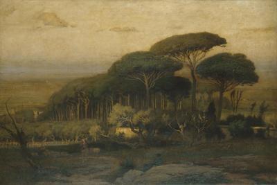 Pine Grove of the Barberini Villa, 1876