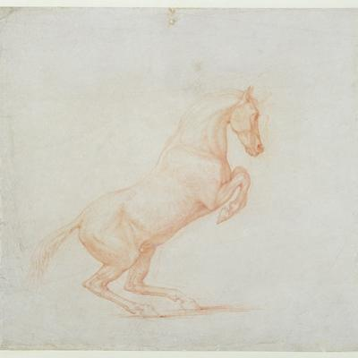 A Prancing Horse, Facing Right, 1790 (Red Chalk on Paper)