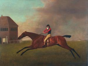 Baronet with Sam Chifney Up, 1791 by George Stubbs
