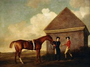 Eclipse', a Dark Chestnut Racehorse Held by a Groom, with a Jockey, Possibly Jack Oakley, by the… by George Stubbs