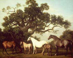 Mares and Foals by George Stubbs