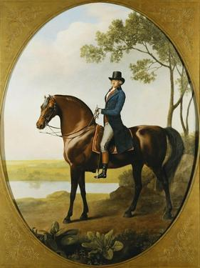 Portrait of Warren Hastings, on His Celebrated Arabian, Wearing a Blue Coat and Grey Breeches by George Stubbs