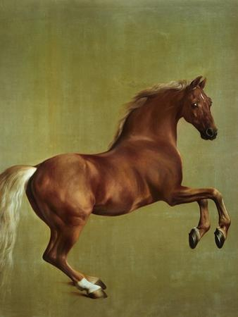 Whistlejacket, 1762 by George Stubbs