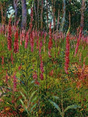 Foxgloves, c.1916 by Georges Lacombe