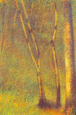 Georges Seurat Forest in Pontaubert