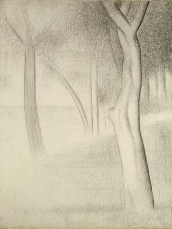 Trees (Study for La Grande Jatte), 1884