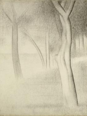 Trees (Study for La Grande Jatte), 1884 by Georges Seurat