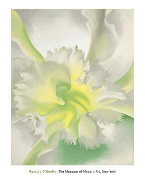 An Orchid, 1941 by Georgia O'Keeffe