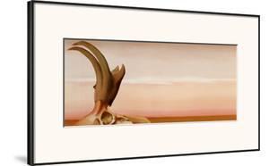 Antelope by Georgia O'Keeffe