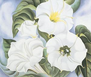 Jimson Weed, c.1935 by Georgia O'Keeffe