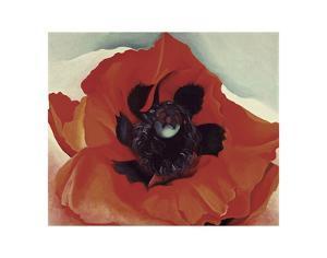 Poppy, c.1927 by Georgia O'Keeffe