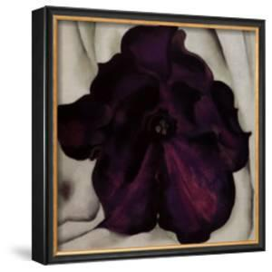 Purple Petunia, 1925 by Georgia O'Keeffe