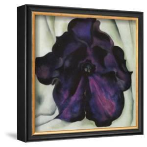 Purple Petunia by Georgia O'Keeffe