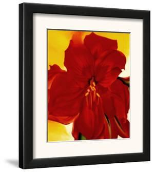 Red Amaryllis, 1937 by Georgia O'Keeffe