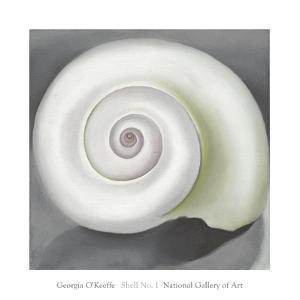 Shell No. I, 1928 by Georgia O'Keeffe