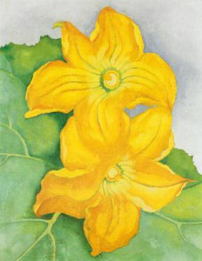 Squash Blossoms by Georgia O'Keeffe