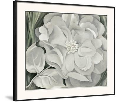 The White Calico Flower, c.1931