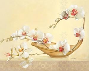 Bol D'Orchidées by Gerard Beauvoir