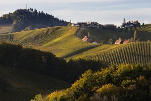Europe, Austria, Styria, South-Styrian Wine Route, Vineyards, Houses by Gerhard Wild
