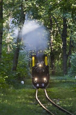 Miniatur Railway in the Prater, Steam Locomotive Da2, Vienna, Austria, Europe by Gerhard Wild