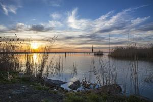 Sunrise at the Lake Neusiedl at Purbach, Burgenland, Austria, Europe by Gerhard Wild