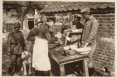 A Veterinary Hospital at the Front (B/W Photo)
