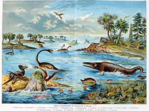 Prehistory - Jurassic - Reconstruction of Natural Environment in Europe and Some of the Animals… by German School