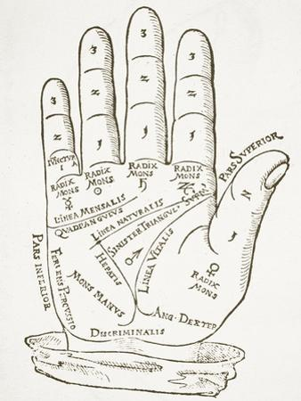 The Right Hand, Copy of an Illustration from 'Cerasariensis' by Tricassus, Nuremberg 1560 by German School