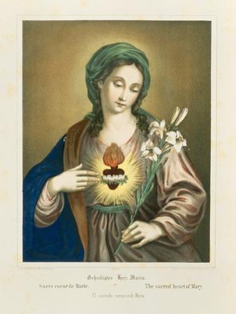 The Sacred Heart of Mary, Published by Fr. Wentzel, Weissenburg, 1850