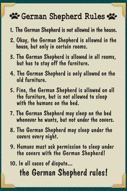 German Shepherd House Rules