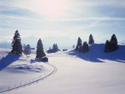 https://imgc.allpostersimages.com/img/posters/germany-bavaria-allgshu-snow-scenery-back-light-alps-mountains-loneliness-mountains-winter_u-L-Q11YY6B0.jpg?p=0