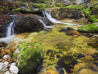 https://imgc.allpostersimages.com/img/posters/germany-bavaria-natural-reserve-schwarzbach-autumn-moss-brook-waterfall_u-L-Q11YNJ80.jpg?p=0