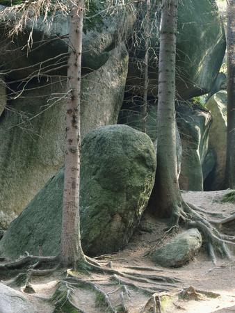 https://imgc.allpostersimages.com/img/posters/germany-fichtelgebirge-fichtel-mountains-luisenburg-rock-labyrinth-near-wunsiedel_u-L-Q11YWWJ0.jpg?p=0