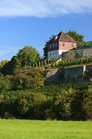 https://imgc.allpostersimages.com/img/posters/germany-saxony-anhalt-burgenlandkreis-gro-jena-max-klinger-vineyard-with-vineyard-house_u-L-Q11YHBO0.jpg?p=0