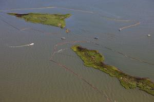 Aerial View of Oiled Bird Nesting Colonies in Barataria Bay Area of the Mississippi River Delta by Gerrit Vyn