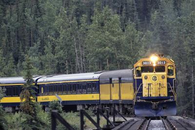 Alaska Railroad Train, Denali National Park, Alaska, USA by Gerry Reynolds