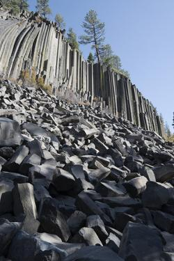 Devils Postpile, National Monument, Mammoth Mountain, Mammoth Lakes, California, USA by Gerry Reynolds