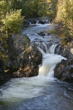 Rancheria Falls, Rancheria River, Yukon, Canada by Gerry Reynolds