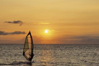 Sunset, Windsurfing, Ocean, Maui, Hawaii, USA
