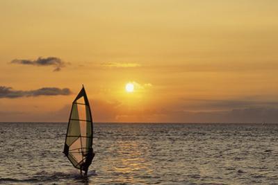 Sunset, Windsurfing, Ocean, Maui, Hawaii, USA by Gerry Reynolds
