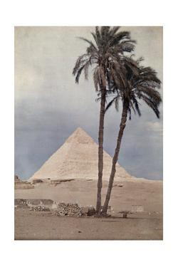 Palm Trees Stands in the Foreground of One of the Pyramids of Giza by Gervais Courtellemont