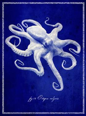 Octopus by GI ArtLab