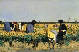 Harvesting Rice in Low Lands of Verona by Giacomo Favretto