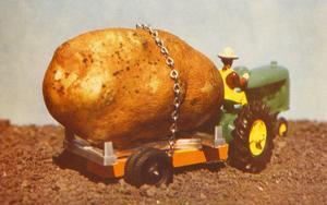Giant Potato on Toy Tractor